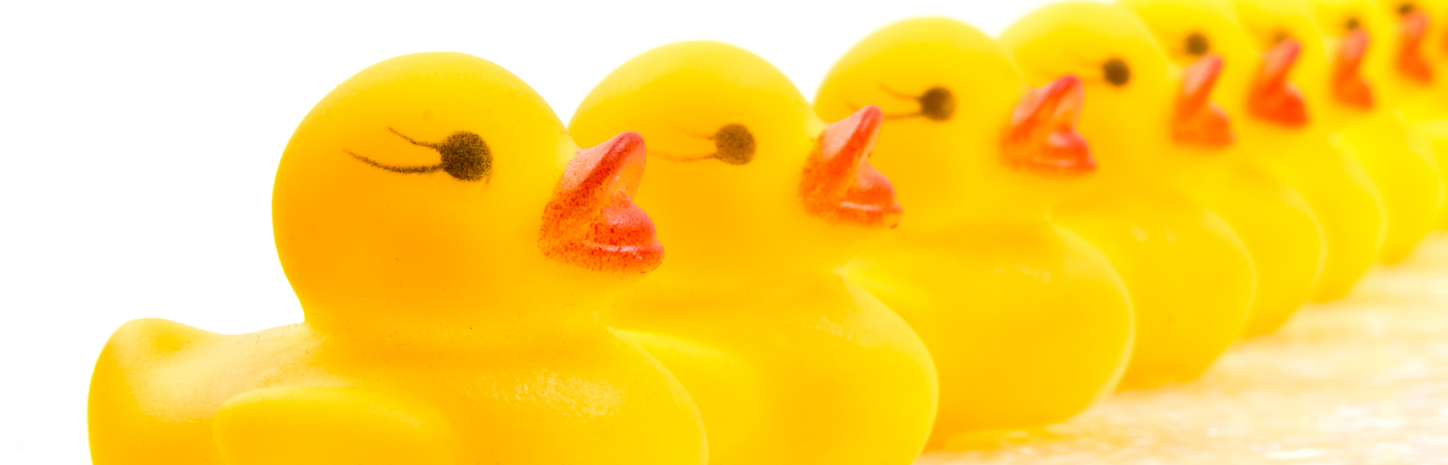 Revenue Reboot: Getting your ducks back in a row