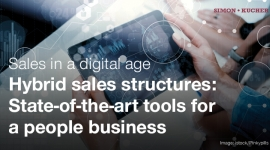 Sales in a Digital Age - Hybrid Sales Structures