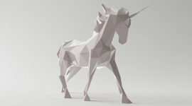 unicorn case study