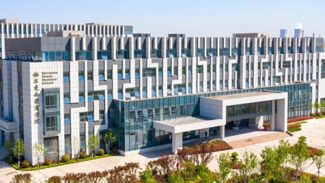 Hermann Simon Business School